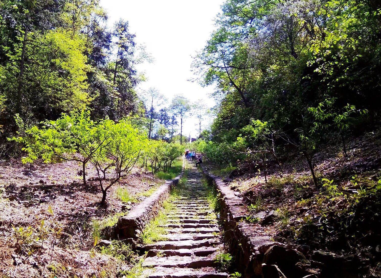 慈城镇有一个藏在山岙的古村,村边就是茶马古道,风景秀丽